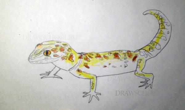 Как рисовать ящерицу и змею