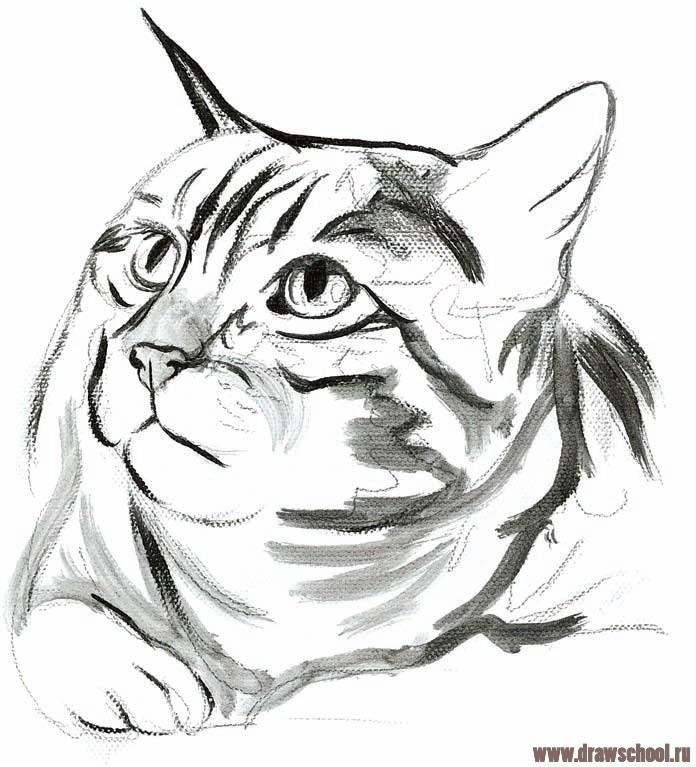 Как нарисовать кота леопольда поэтапно - e4b0