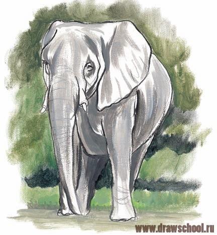 Как нарисовать мультяшного слона